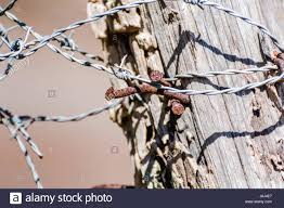 Barbed Wire Fence Post With Rusty Nails Stock Photo Alamy