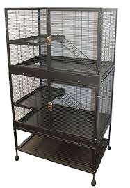 helping you choose the right degu cage