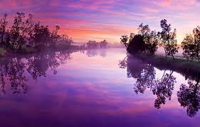 wallpaper pink landscape lake forest
