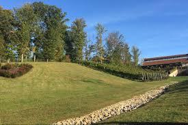 potomac point winery vineyard