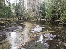 diy pond dredging pirate4x4 4x4