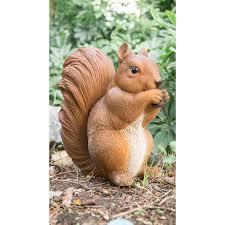 hi line gift ltd squirrel eating