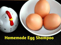 homemade egg shoo cleans