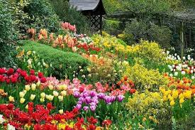 peaceful while in the flower garden