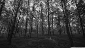 black and white wallpaper 1080p