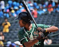 Marlins' top three draft picks land on Hoppers roster after flurry of moves    Grasshoppers   greensboro.com