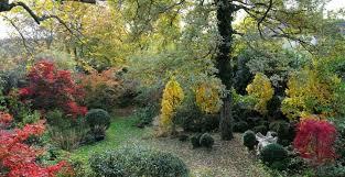 Les variétés à beaux feuillages d'automne - M6 Deco.fr