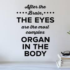 The Eyes Wall Decal 0513 After The Brain The Eyes Are The Most Com Wall Decal Studios Com