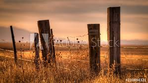 Wooden Post Barbed Wire Fence Surrounding A Field At Sunset Buy This Stock Photo And Explore Similar Images At Adobe Stock Adobe Stock