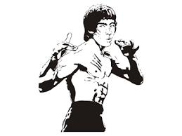 Bruce Lee Eshop Stickers