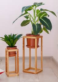 how to use an indoor plant stand