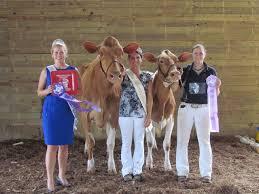 Dairy Agenda Today - Dairy News