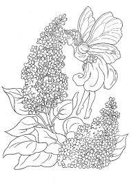 Kleurplaten Voor Volwassenen Bloemen Google Zoeken Fee