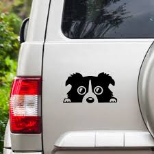 Border Collie Dog Vinyl Car Decal Car Rear Window Decal Car Etsy
