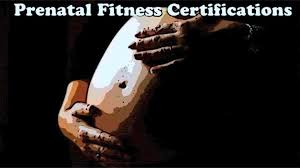 prenatal fitness certifications the