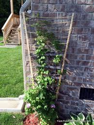 flower pot trellis ideas
