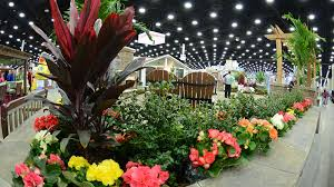 the home garden remodeling show