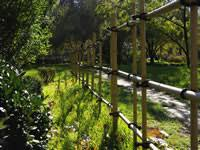 Bamboo Fence Panels Diy Or Readymade Bamboo For Fencing