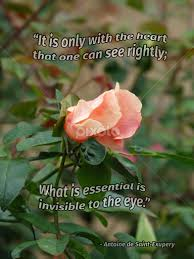 quotes about rosebuds quotes