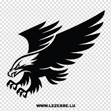 Eagle Bird Car Decal Sticker Window Wall Decal Truck Bumper Transparent Background Png Clipart Hiclipart