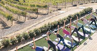 combining wine and yoga is the new zen