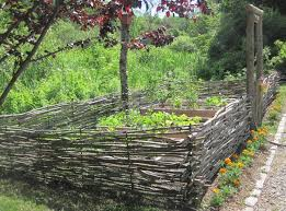 Wattle Fence Insteading