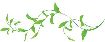 葉っぱや草木のイラスト・画像・フリー素材/No.253『緑・葉・水滴』