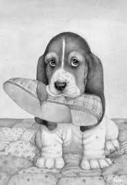 Coloring For Adults Kleuren Voor Volwassenen Hond Tekeningen