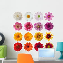 Collection Daisies Wall Decal Sticker Set Wallmonkeys Com