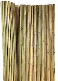 Amazon Com Master Garden Products Bwf 48 Tonkin Bamboo Fence 3 4 Diameter Poles 8 L X 4 H Yellow Garden Outdoor