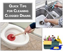 tips to clean clogged drain toilet