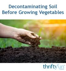 decontaminating soil before growing