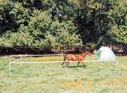 Portable Horses Polytape Electric Corral Powerfields Shopspur Online Ranching Supplies