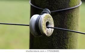 Porcelain Electric Fence Insulator Images Stock Photos Vectors Shutterstock
