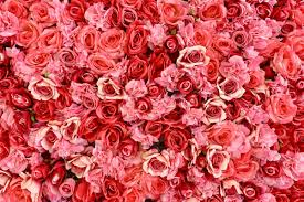 Image result for things to gift a loved one on valentine's day
