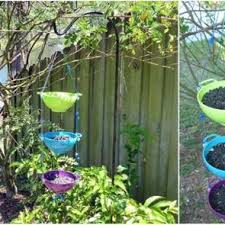 Diy Bird Feeder Birds And Blooms