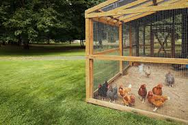 4 Chicken Runs And Coops Built From Recycled Materials Backyard Poultry