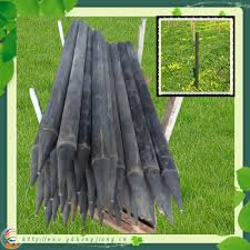 Oyster Cage Plastic Fencing Post Rpp4 7 Manufacturer From China Foshan Nanhai Danzao Hongjiang Daily Necessaries Factory