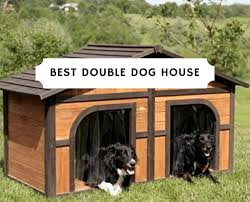 Best Double Dog House 2020 Dog House For Two Dogs We Love Doodles