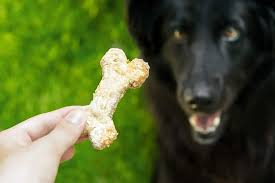 functional treats for dogs