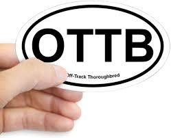 Amazon Com Cafepress Ottb Off Track Thoroughbred Oval Sticker Oval Bumper Sticker Euro Oval Car Decal Home Kitchen