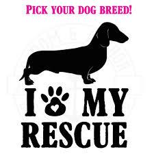 Stickers Tagged Pet Parent Bloomandanchor