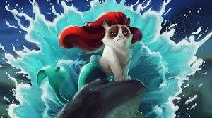 hd wallpaper grumpy cat disney humor