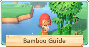 Acnh Bamboo Bamboo Shoots Young Spring Bamboo How To Get Animal Crossing Gamewith