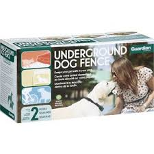 Guardian Underground Dog Fence System Review Sullivanxlibbymir