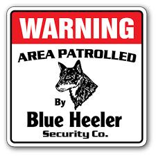 Blue Heeler Security 3 Pack Of Vinyl Decal Stickers 4 X 4 For Laptop Car Walmart Com Walmart Com