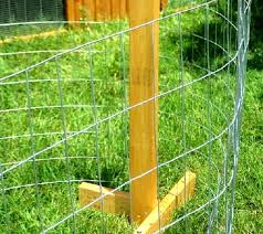 Portable Chicken Fencing And Garden Fencing Chicken Fence Chicken Diy Portable Chicken Coop