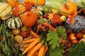 Automne et alimentation - Observatoire des aliments