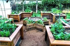 small backyard vegetable garden