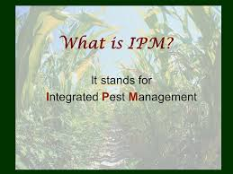 Integrated Pest Management By: Melody Carter-McCabe. - ppt download